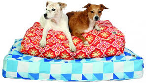 Top Rated Orthopedic Dog Beds by The Best Orthopedic Dog Beds Whole Dog Journal