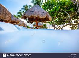 100 Wooden Parasols Parasols With Thatched Straw Roof In An Exclusive