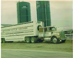 About | Metzger Trucking Trucking The Worlds Best Photos Of 389 And Livestock Flickr Hive Mind About Metzger Agricultural Exemptions Instated For Regulations Pork Firms Worried Electronic Logging Device Could Hurt Henderson Jobs Otr Long Haul Truck Drivers West Land Cattle Hauler Jessica Lorees 2003 Pete 379 Livestockcattle Haulers Sale Llc Kenworth T800 With 4 Axle Tra Truck Spill Cleaned Up A Lot Help Krvn Radio Australian Livestock Rural Transporters Association
