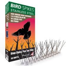 bird x original bird x stainless steel bird spikes 50 ft pigeons