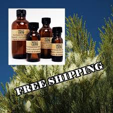 ORGANIC TEA TREE Essential Oil | Melaleuca Pure Therapeutic - Aromatherapy  Grade | Distiller Direct Wholesale Pricing |Bulk Sizes |Free Ship 25 Off Frankly Eco Coupons Promo Discount Codes Wethriftcom Best Natural Essential Oils More Plant Guru Face Cleanser Organic Just Call Me Melaleuca Alternifolia Tea Tree Mega Blog Post My Memphis Mommy Mar 11 2019 Spring Valley Skin Health Oil 2 Oz Pop Shop America Handmade Beauty Box Coupon June 2018 Msa Dermalogica Medibac Clearing Adult Acne Treatment Kit No Restore Water Flow Bridge In Miami Everglades Therapy 100 Pure Prediluted Rollon Aromatherapy Bleu Lavande Set 4x15ml