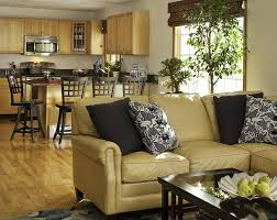 Transitional Living Room Leather Sofa by Caramel Leather Sofa Living Room Transitional With Graphic