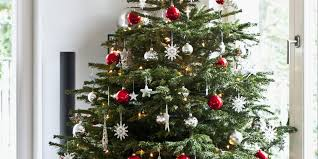Best Real Christmas Tree Type Canada by Real Christmas Tree Vs Fake Christmas Lights Decoration