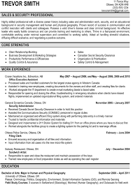 Sample Resumes For Marketing Professionals Adorable Sales Security