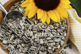 Roasted Unsalted Pumpkin Seeds Nutrition Facts by How Many Calories Are In One Tablespoon Of Sunflower Seeds