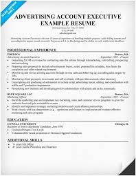 Accounting Executive Sample Resume Format Accounts Of Manager