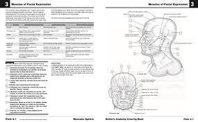 Netter Cuaderno De Anatomia Para Colorear Jpg US 100 En Mercado