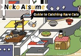 Neko Atsume Guide Cat Items You Have To Own