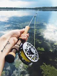 Backyard Fishing. Almost. – Birch & Flannel Diy Backyard Fishing Activity 3br House Boating Or From The Naplesflorida Landscaping Vancouver Washington Complete With Large Verpatio Six Mile Lakemccrae Lake July 1017 15 Youtube Pond Outdoor Goods Nick Wondo In Spin More Poi Bed Scanners Patio Heater Flame Tube Its Koi Vs Heron Chicago Police Officer In Epic Can Survive A Minnesota Winter The 25 Trending Ponds Ideas On Pinterest Ponds Category Arizona Game And Fish Flagstaff Stem City