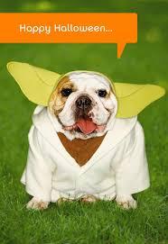 Free Halloween Ecards Hallmark by Star Wars Yoda Dog Halloween Card Greeting Cards Hallmark