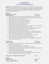 Sample Resume For School Counselor Beautiful Guidance On