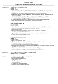 Download Parts Sales Resume Sample As Image File