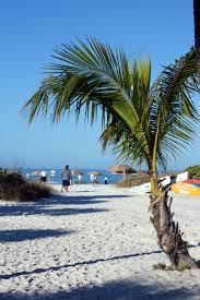 Daiquiri Deck Raw Bar Siesta Key by Best 25 Siesta Key Beach Ideas On Pinterest U Florida Good