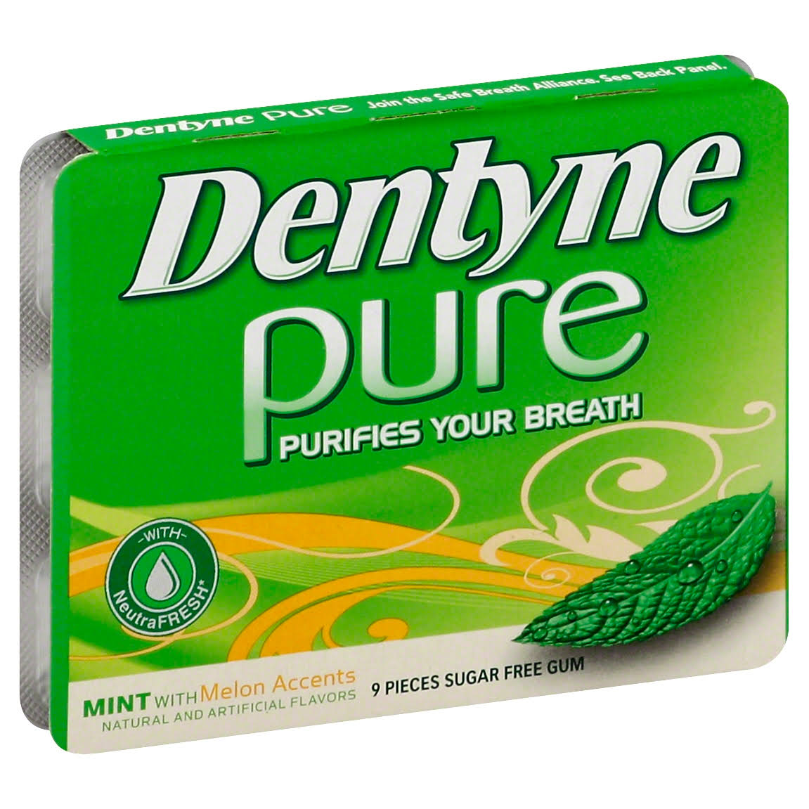 Dentyne Pure Gum, Sugar Free, Mint with Melon Accents - 9 pieces