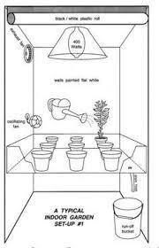 How To Grow Marijuana Indoors Growing Room Cannabis
