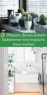 ideale pflanzen fürs badezimmer badshop skybad