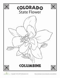 First Grade Coloring Worksheets Colorado State Flower