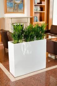 pflanzkübel raumteiler fiberglas elemento kaufland de