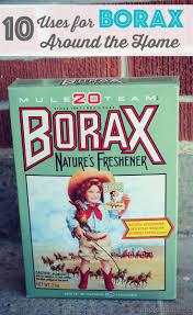 Best 25 Uses for borax ideas on Pinterest
