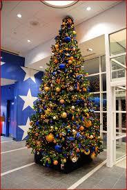 Christmas Tree Permits Colorado Buffalo Creek by 100 Christmas Tree Permits Colorado Christmas Tree Fox13now