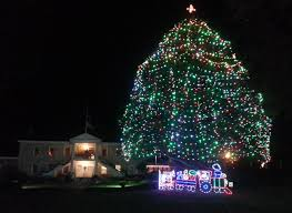 Christmas Tree Lane Palo Alto by California Heritage My Wine Country Village