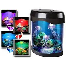 Jellyfish Mood Lamp Amazon by Colour Changing Light Up Jellyfish Tank Back By Popular Demand