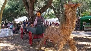 Sarasota Pumpkin Festival 2017 by Scenes From The Hunsader Farms Pumpkin Festival Bradenton Herald