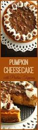 Pumpkin Praline Pie Cooks Illustrated by Pumpkin Cheesecake With Praline Pecan Topping Favorite Family