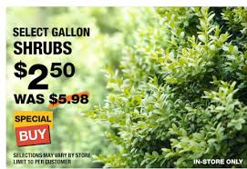 HOME DEPOT Spring Sale $2 Mulch $2 50 Shrubs Miracle Gro Soil