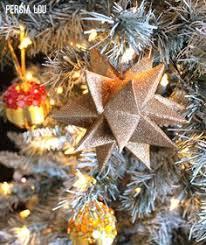 Crab Pot Christmas Trees Dealers by Pinterest U2022 The World U0027s Catalog Of Ideas