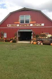 Pumpkin Farms In South Georgia by These Are The Best Pumpkin Patches In Every Southern State