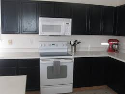 Black Painted Cabinets With White Appliances This Convinces Me That For The Feel I Want