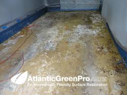 How Remove Paint From Carpet by Atlantic Green Pro Residential Sandblasting