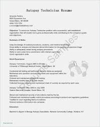 Free Collection 55 Resume Template Pdf Model | Professional Template ... Resume Sample For Job Application Pdf Genuine Blank Form Five Reliable Sources To Realty Executives Mi Invoice And 30 Templates Free Download Forms Fill Out In The Form Cover Letter Template Intended For Up Of Tagalog Format Job Application Pdf Basic Appication Letter Blank Resume Ammcobus In 46 Doc Premium Header Samples Examples Unique Awesome Inspirational Fancy Printable Motif