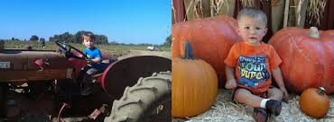 Bishop Pumpkin Farm Wheatland California by These 5 Pumpkin Farms In Northern California Will Get You Into The