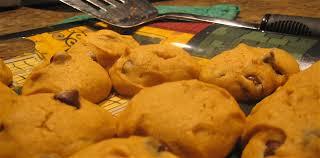 Healthy Chocolate Pumpkin Desserts by Recipe Pumpkin Chocolate Chip Cookies Elizabites