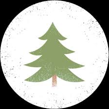 Fraser Christmas Trees Uk by Tycerrig Christmas Tree Farm Family Fun Letters To Santa Cardiff