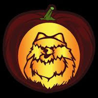 Wolf Face Pumpkin Carving Patterns by 81 Best Animals And Insects Stencils Images On Pinterest Insects