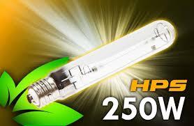 250 watt hps grow light 31 000 lumens for indoor