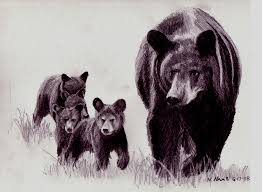 900x662 Mother Bear And Cubs Drawing By Nelson Haas