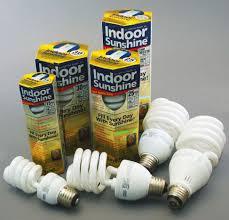 Uv Lamp Vitamin D Supplement by Vitamin D Lamp Vitamin D Light Bulbs Fascinating Standard