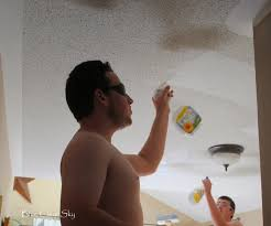 Scrape Popcorn Ceiling Dry by Popcorn Ceiling Spray Paint Part 30 Bros Or Pros 2017 Home