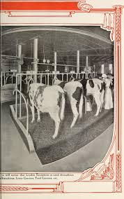 File:Dairy Barn Equipment, Horse Stable Fittings, Barn Plans (1918 ... Kitchen Accsories Deer Bath Set Picone Bat House On Hop Yard Postbarngoats Wrestling Over Spent Brew Old Style Farmer Barn Stock Image Image Of Wood Bamboo 15537973 Us Spray Foam Rentals Our Insulation Rental Equipment Yorbaslaughter Adobe Bolvar Iiguez Archinect Pictures Learning From Tillamook Dairy Posts Keith Woodford Filelouden Hay Unloading Tools And Garage Door Hangers Services Sunset Logistics Llc Free Images Tractor Farm Vintage Retro Transport First Light Day After 55 Years Green Mountain Timber Frames 52 Best Stall Doors Images Pinterest Dream Horse Stalls