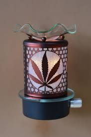 Aurora Candle Warmer Lamp by Best 25 Electric Oil Warmer Ideas On Pinterest Garden Gnomes