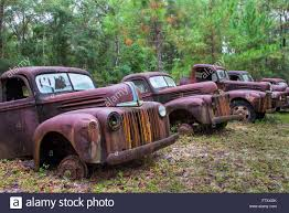 Old Rusted Abandoned Trucks And Cars Stock Photo: 90946035 - Alamy Vehicle Graveyard Abandoned Australia Urban Exploration In Semi Trucks Us 2016 Vehicles Old Truck Interior Stock Photo 795549457 Brendon Connelly Flickr Pin By Jim Straughan On Junker Pickups Pinterest Trucks On Field Against Sky Getty Images Rusty Abandoned The Yard Snehitdesign Fog Side Of Road Sonoma County Home Weekends Jobs Trucking Life A Truck Driver Rusted Cars Photos Army Somewhere Europe Peter Hoste