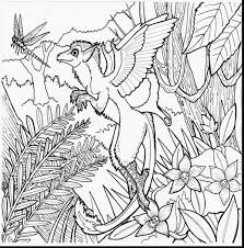 Magnificent Printable Coloring Pages With Rainforest And For Preschoolers