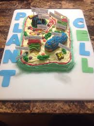 Trey s Science Project Plant Cell Cake