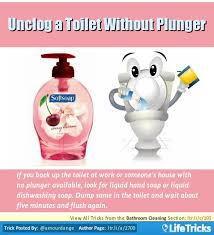 Unclogging Bathtub With Plunger by Bathroom Cleaning Unclog A Toilet Without Plunger Hacks