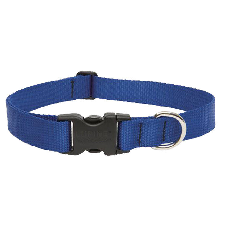 Lupine Dog Collar Blue 16-28""