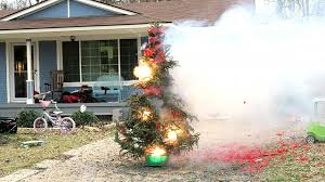 Are Christmas Trees Poisonous To Dogs by Blowing Up Our Christmas Tree Youtube